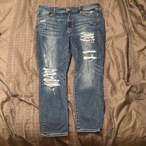 Plus-Size Skinny Jeans